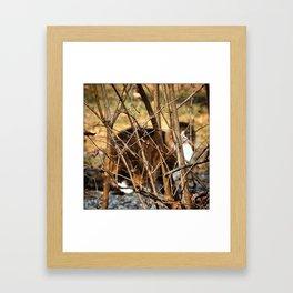 How Not to Be Seen Framed Art Print