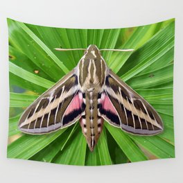White Lined Sphinx Hyles Lineata Moth on Palm Wall Tapestry