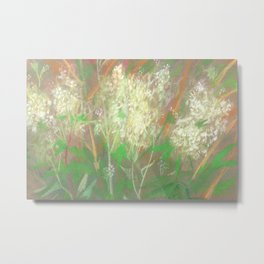 White Flowers / Meadowsweet Metal Print