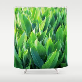 Green leaves so beautiful. Shower Curtain