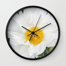 Krinkled white peony Wall Clock