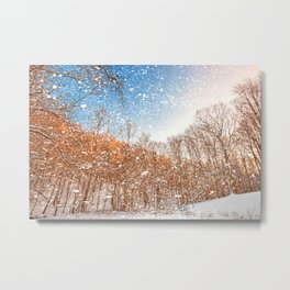Snow Spattered Winter Forest Metal Print