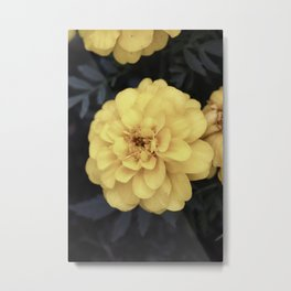 Eerie Yellow Flowers Vintage Metal Print