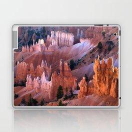 Bryce National Park Laptop & iPad Skin
