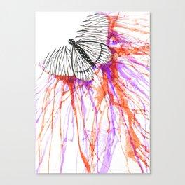 butterfly splash Canvas Print