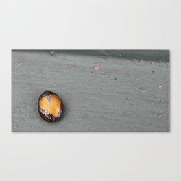 Heart Rock On Windowsill Canvas Print
