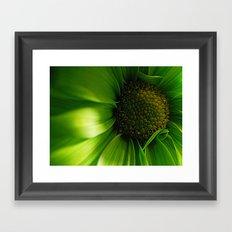 Green Daisy  Framed Art Print