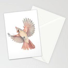 Lady Cardinal Stationery Cards