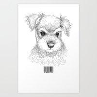 schnauzer Art Prints featuring Schnauzer by Det Tidkun