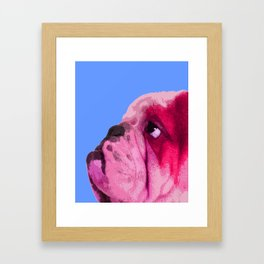 English bulldog portrait, Blue Pop art. Framed Art Print
