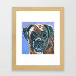 Boone the Boxer Dog Portrait Framed Art Print
