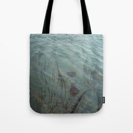 Lake Lady // Double Exposed Tote Bag