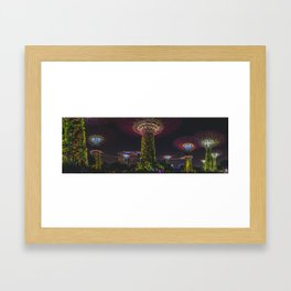 Gardens By The Bay at Night Framed Art Print