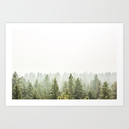 arial forest print, tree top print, wall art, woodland print, forest print, arial fog tree phoo Art Print