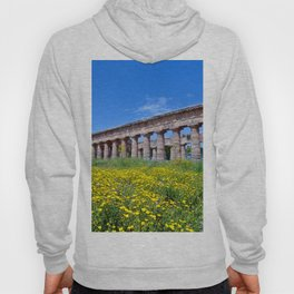Antique Ruins of Segesta in Sicily  Hoody