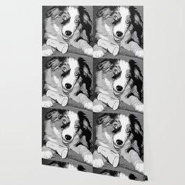 australian shepherd aussie dog puppy vector art black white Wallpaper