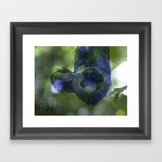 Hang in there Framed Art Print