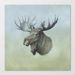 Moose, Elch, Elg Canvas Print
