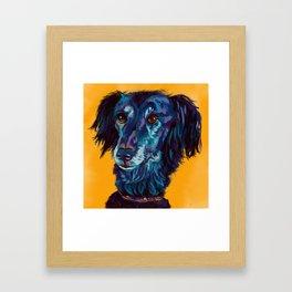 Turquoise Lurcher Framed Art Print