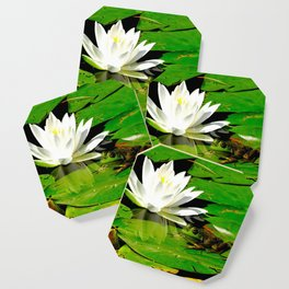 Frog with lily flower reflection Coaster