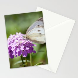 Melanargia larissa kind of anatolia butterfly Stationery Cards
