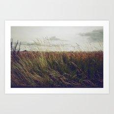 Autumn Field I Art Print