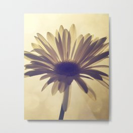 Flowers photo Metal Print