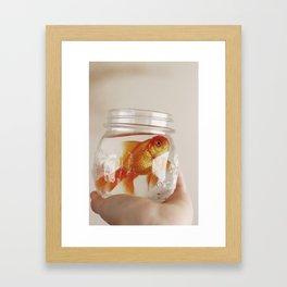 jar of fish Framed Art Print