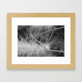 Hamlin Grass Framed Art Print