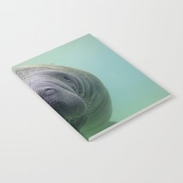 Manatee Notebook