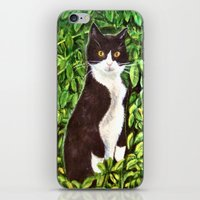 kitty iPhone & iPod Skins featuring Kitty by gretzky