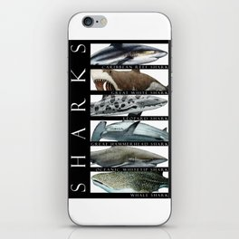Sharks of the World iPhone Skin