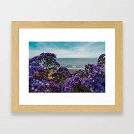 Cute Purple WildFlowers on the California Coast Spring Superbloom Framed Art Print