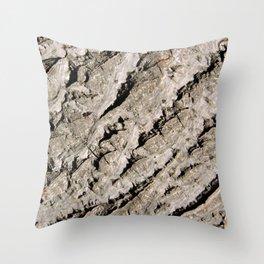 TEXTURES: Walnut Bark Throw Pillow