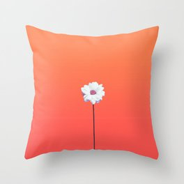 Summery Sunset Orange Gradient and White Daisy Throw Pillow