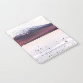 Bolivian Flamingos Notebook