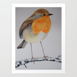 Robin Watercolour Art Print