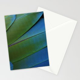 Little Feathers Stationery Cards