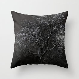 A Lonely bench Throw Pillow