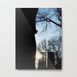 Mnhttn Sqrrl Metal Print