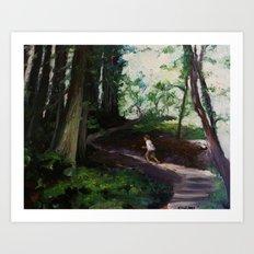 Redwood Forest Study Art Print