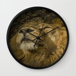 Caught My Eye Wall Clock