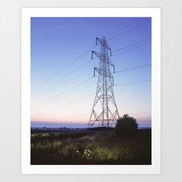 Oxeye Daisy and electricity pylon lit by torch light at twilight. Norfolk, UK. (Shot on film). Art Print