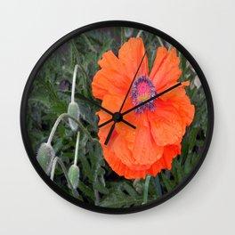 Rainy day Chinese Poppy... Wall Clock