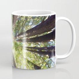 Humboldt California Redwood Trees Coffee Mug