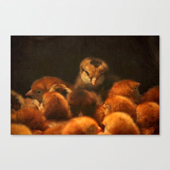 My Peeps Canvas Print
