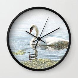 Swan on Attenborough Nature Reserve, Nottingham,England Wall Clock