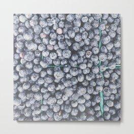 Oregon Blueberries Metal Print