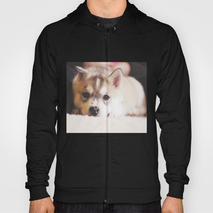 "siberian husky puppy - ""nova"" Hoody"