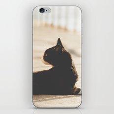 Gatunadas II iPhone & iPod Skin